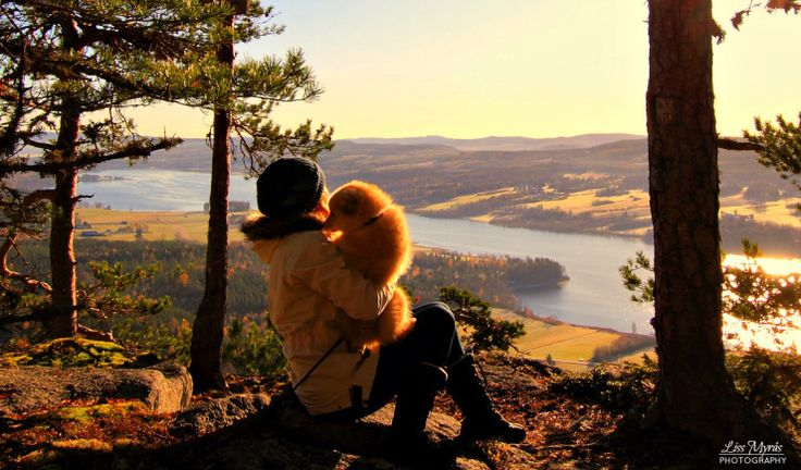 Antarsberget Pokerhyllan #sverige #viewpoint #hiking #lapphund #hiking #norrland landscape  #hike #hikingtrail  #utsikt #fritid #trening #antarsberget #örnsköldsvik #norrland #landscape #sverige #swedishmoments #sweden #naturelovers #bredbyn #högakusten #highcoast #västernorrland #cardio #finsklapphund #uphill #mountains #viewpoint #panoramic