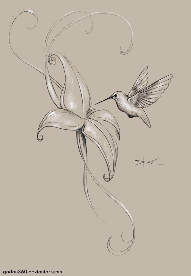 Draw It Again Colibri Tt by godan360