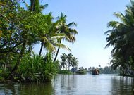 What to do in Kovalam
