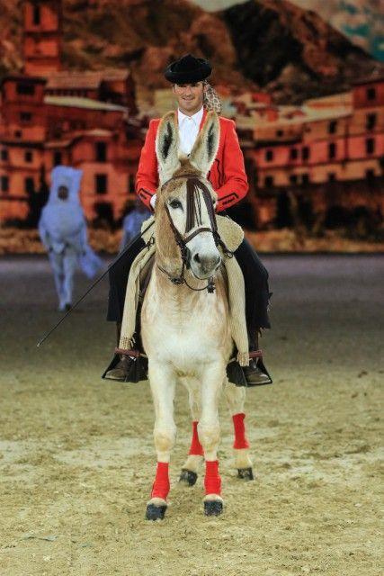 Tolle Darbietungen rund um den Pferdesport gibt es auch weiterhin auf der EQUITANA  in Essen. © EQUITANA / Sven Cramer