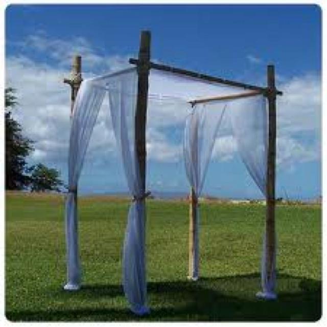 Bamboo Wedding Arch: Bamboo Wedding Arch
