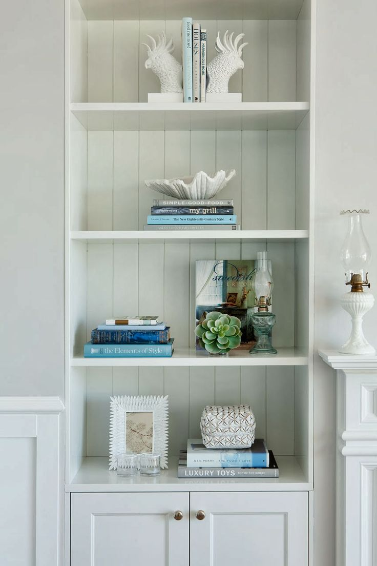simple shelves with wide tongue and groove backing