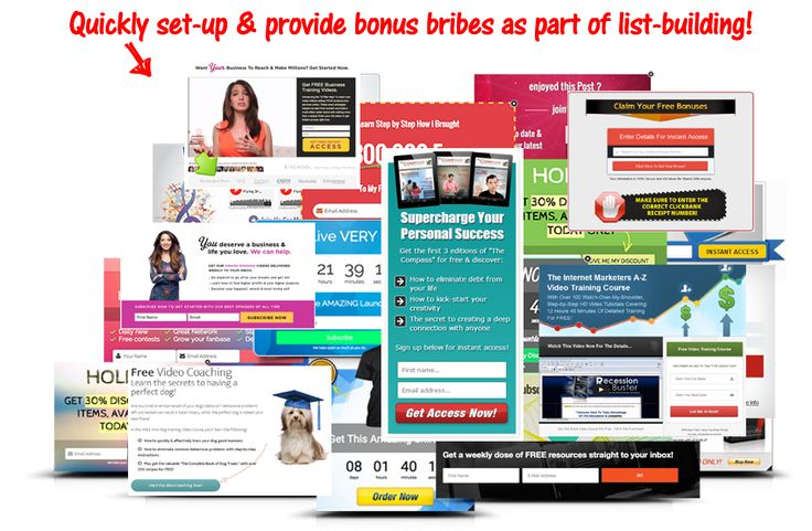 Here is how to quickly grow your email list on autopilot with offering free bonus bribe incentives from our digital catalog. Plus with detailed tracking allows you to see exactly how a person signed up to your list e.g. which ad was responsible.