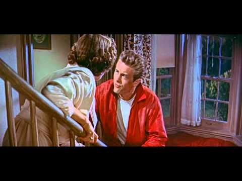 Rebel Without a Cause Trailer - The film I reviewed. Hats off to James Dean and his stellar performance. This film has icons and symbols, interwoven with a classic heroic plot line. Dean's red jacket is even the basis for one of the character's in Futurama