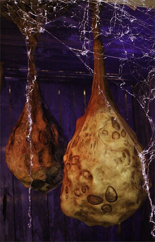 Decorate with Alien Cocoons for Halloween - wikiHow