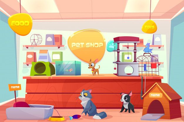 Download Pet Shop With Home Animals, Store Interior With