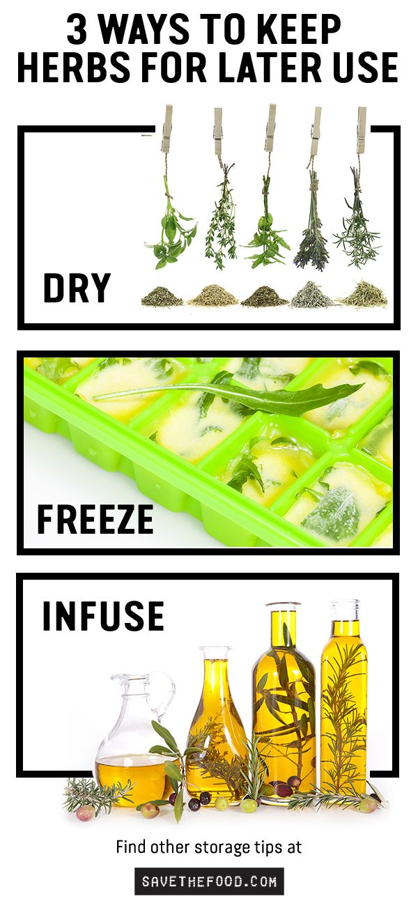 No idea what to do with extra herbs? Hang them to dry to make your own dried herbs. Chop, add oil and freeze in ice cube trays. Add herbs like rosemary to oil and vinegars for something new and infused. Find other storage tips and tricks at SaveTheFood.com
