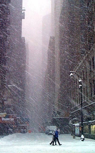 Snowy Day.. New York City, United States.