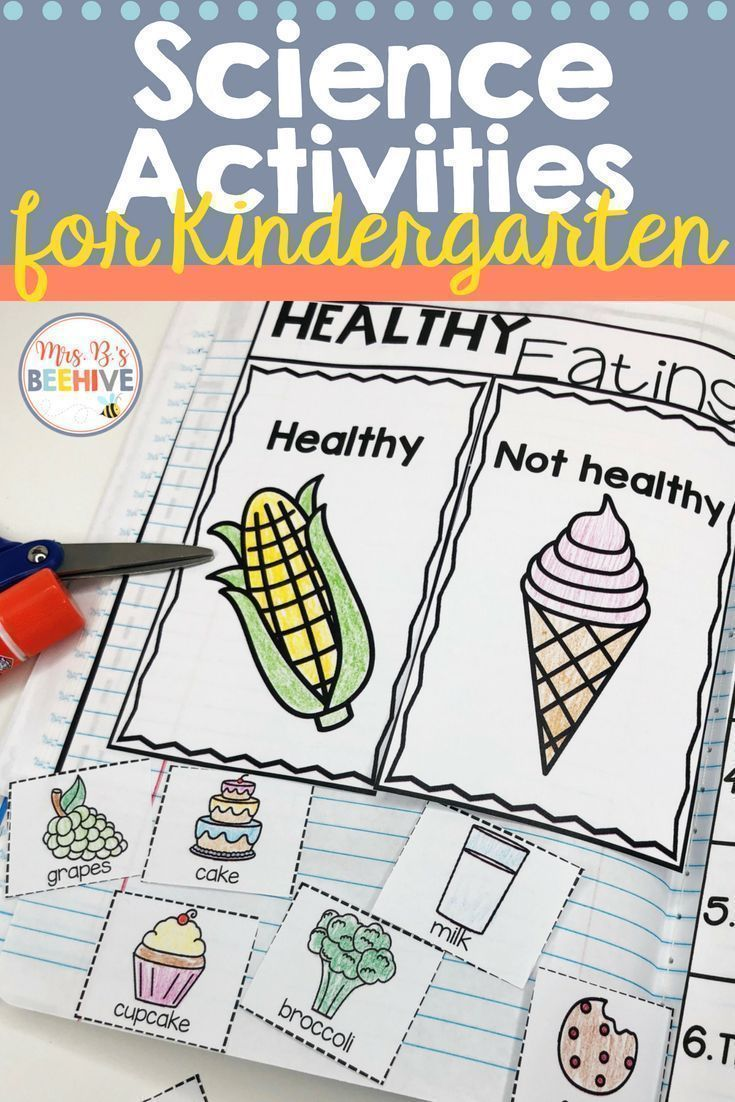 Kindergarten Science – Interactive Journal