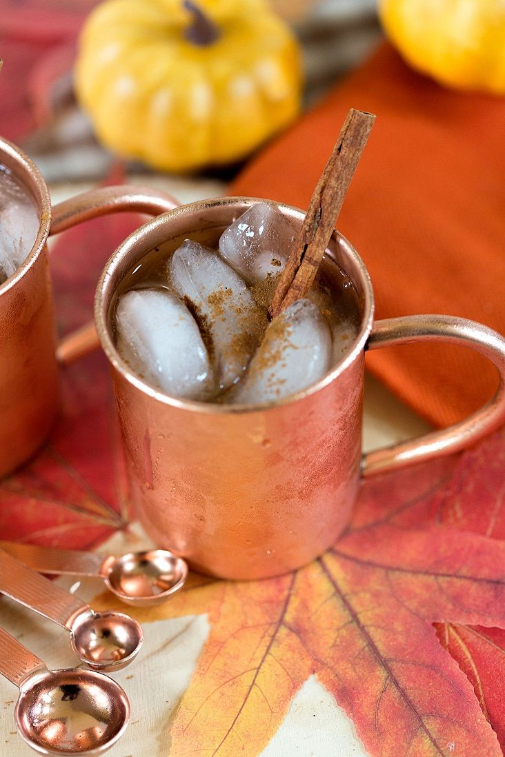 Usher in the autumn season with a cocktail that's reminiscent of the always-popular pumpkin pie! Get the recipe for the Pumpkin Spice Moscow Mule.