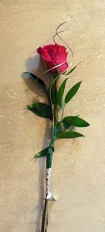 Single Rose wrapped in Ting