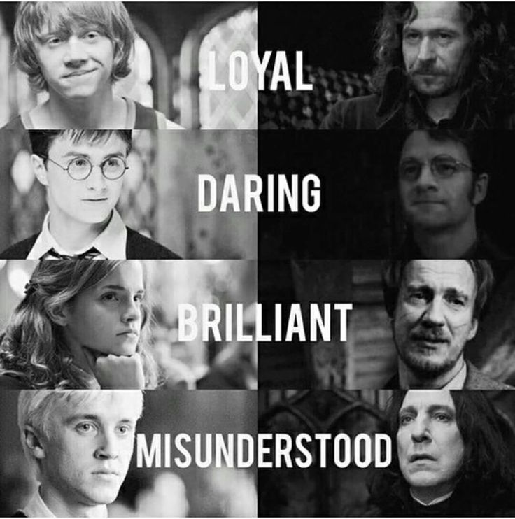 Loyal Daring Brilliant or Misunderstood | Harry Potter | Ron Weasley | Sirius Black | James Potter | Hermione Granger | Remus Lupin | Draco Malfoy | Severus Snape | I think Ginny should be there too, as Daring