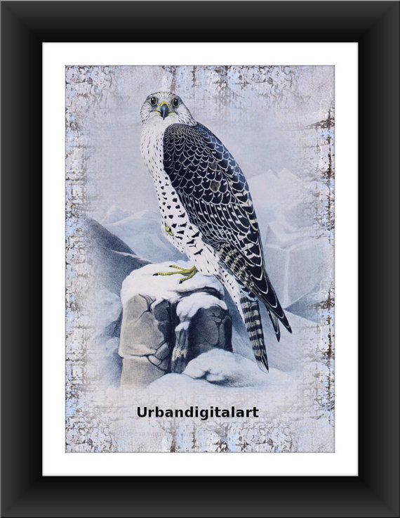 Eagle Vintage Picture-LOW COST-Downloadable by UrbanDigitalArt