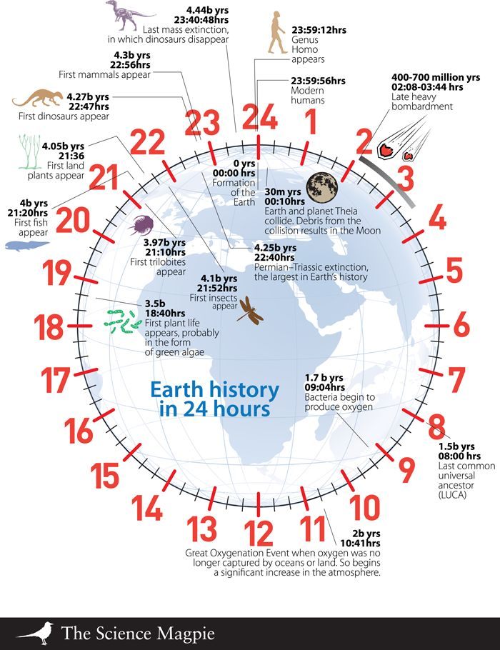 Sometimes, discovering when something happened only begins to make sense when it's seen in relation to other events. This is particularly easy to do if the total time is shown in the form of a clock. The age of the Earth is about 4.5 billion years – on the clock, 1 second equals approximately 52,000 years and one hour is 187.5 million years.