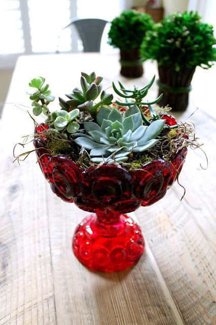 Succulents in vintage vases... Non-drainage container tricks!