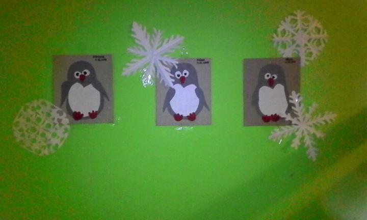tučniaci