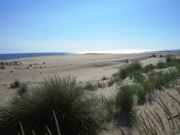 Lu0027île du0027Aix offre de merveilleuses petites plages où règnent calme