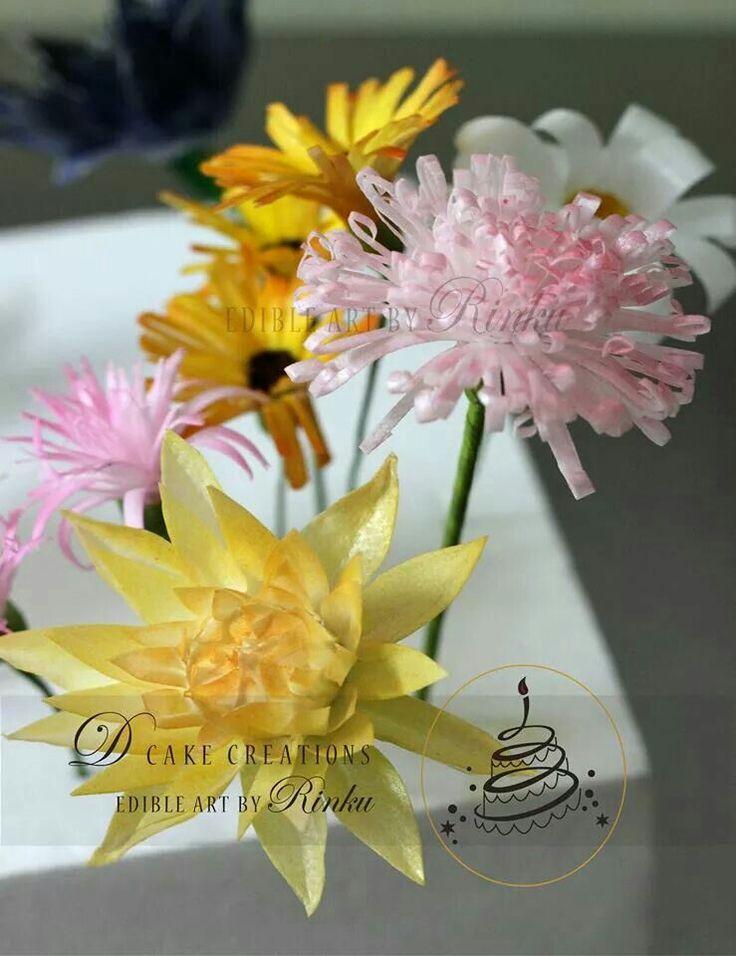 26 best rice paper images on pinterest rice paper wafer paper dahlia spider mum flower dahlia spidermum edible paper flowers mightylinksfo