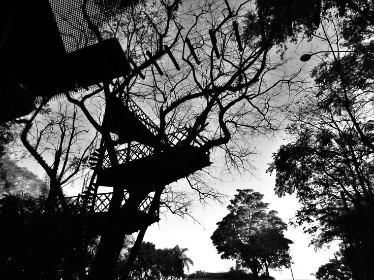 Treehouse in B&W. Parque Maeda - Itu - Sao Paulo - Brazil.