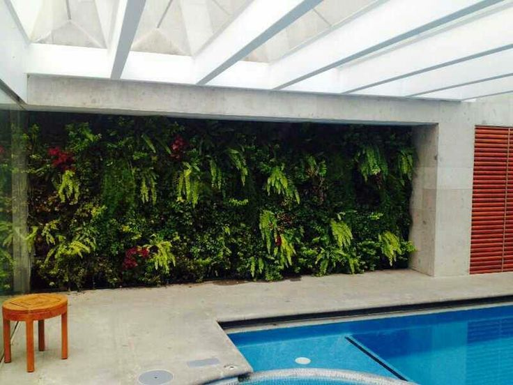 Jardín vertical en alberca techada, riego directo