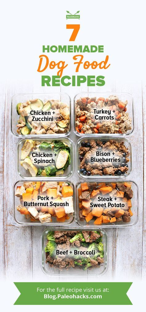 Give your furry family member the highest quality food with these wholesome, freeze-friendly dog meals! Get all recipes here: http://paleo.co/dogfoodrcps