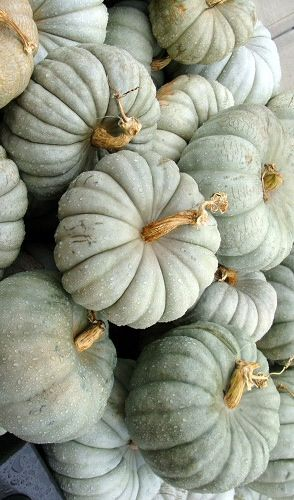 Grey green pumpkins (I'm actually pinning this for paint color inspiration)