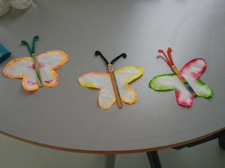 borboletas coloridas
