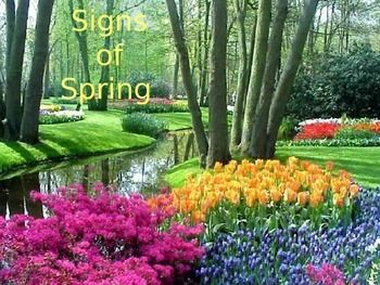 Signs of the Spring Season - This PowerPoint presentation explains the spring season in simple terms using real, full-color photographs. https://www.teacherspayteachers.com/Product/Signs-of-the-Spring-Season-PowerPoint-Presentation-1701589