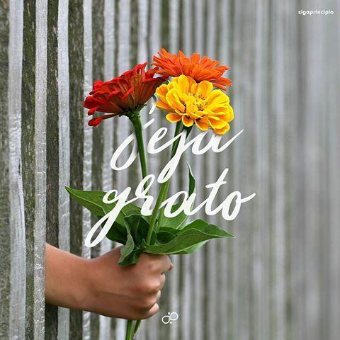 Seja grato! ❤ . . #Deus#God#Jesus#JesusChrist#post#EspiritoSanto#instagod#amor#gratidão#fé#bibliasagrada#oração#escolhiesperar#bomdia#boatarde#boanoite#amém#Ageu#Genesis#soumaisquevencedor#vivopracristo#louvor#love#loveit#coragem#vida#abapai#grato#vivaavida#somosumso