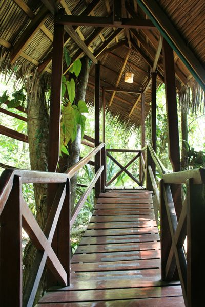 25 best ideas about jungle house on pinterest fun house for Costa rica tree house rental