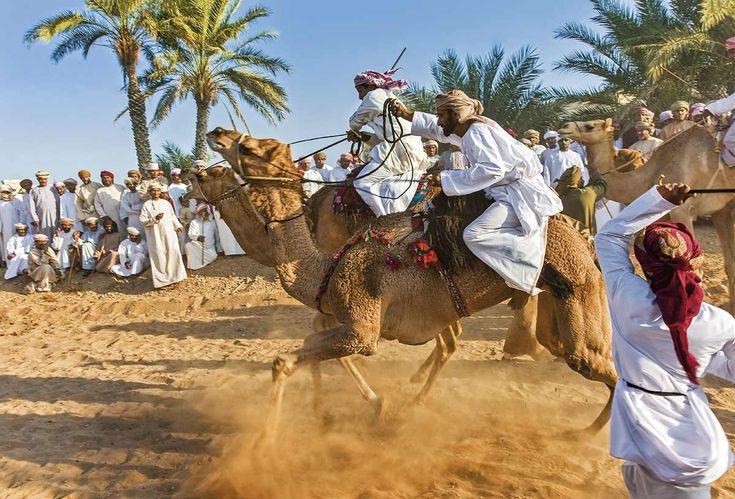 Festival Eid Ul Fitr  La carrera de camellos es el acontecimiento más esperado de esta fiesta, que celebra el final del Ramadán.