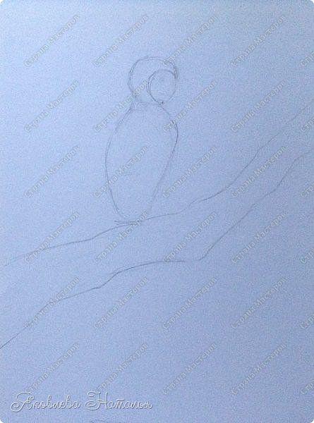 """Всем, здравствуйте!  Продолжаю рубрику """"Рисуем с детьми"""". На этот раз мы рисовали попугая на формате А-3, акварелью и восковыми мелками. Эскиз рисовали простым карандашом.  Ниже работы детей и несколько этапов фото 7"""