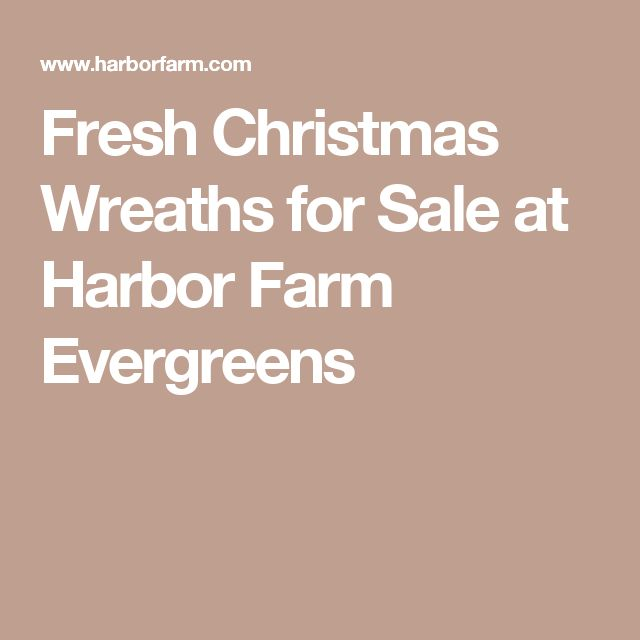 Fresh Christmas Wreaths for Sale at Harbor Farm Evergreens