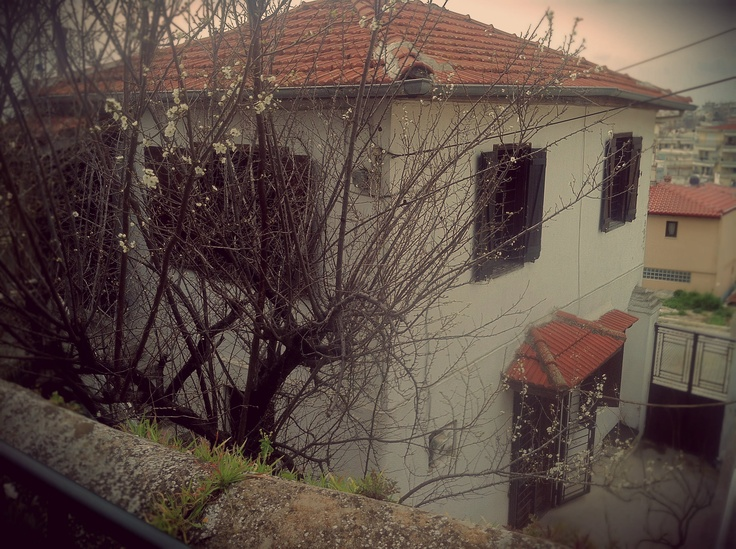 The almond tree is starting to blossom in the garden of this beautiful house in Sykies, only a few meters away from the city wall of Thessaloniki. (Walking Thessaloniki / Route 10, Ano Poli b)