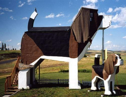 Dog Bark Hotel In Cottonwood Id For