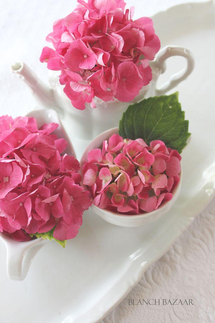 asztaljelenet Hydrangea