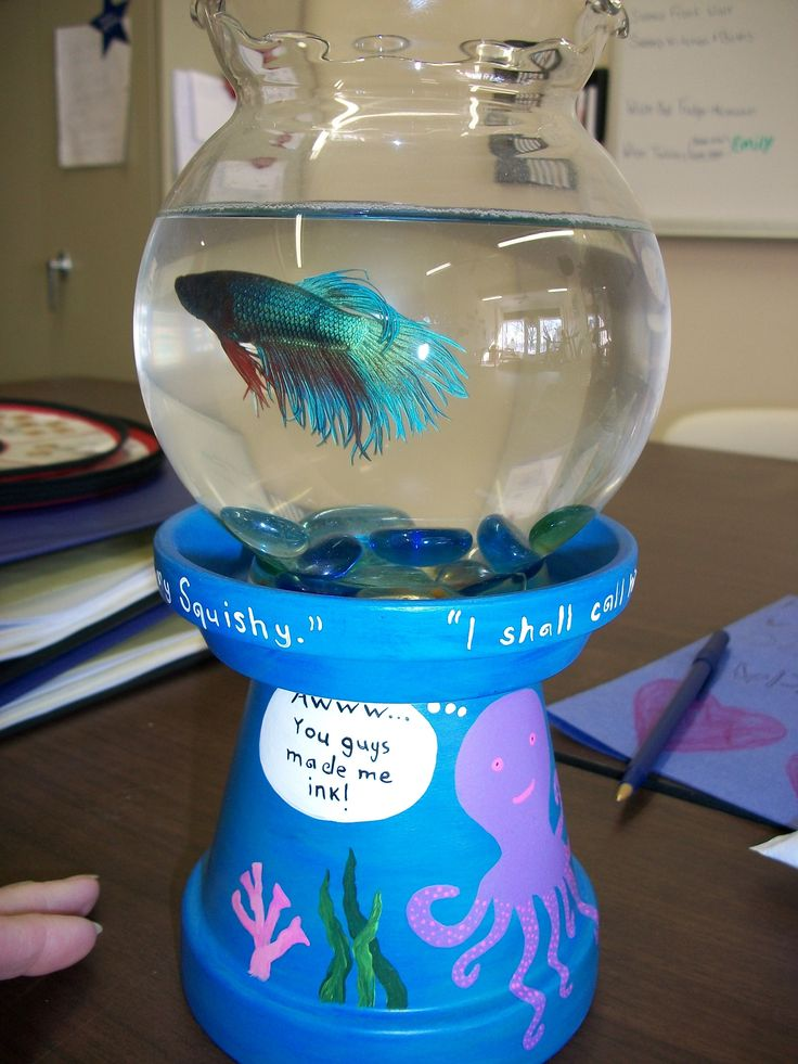 A cute little beta fish bowl idea little mermaid party for Betta fish bowl ideas