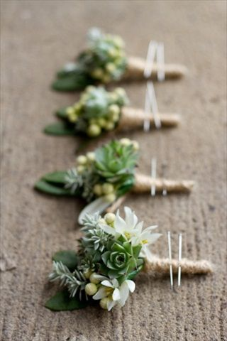 Succulent Buttonholes for the Groom and his Groomsmen? literal meaning being always living and relating to protection. sounds like a great foundation.