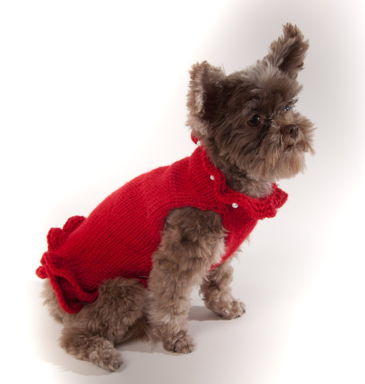 Red Pullover Dog Sweater Dress with faux pearls at neck. $36.00, via Etsy.