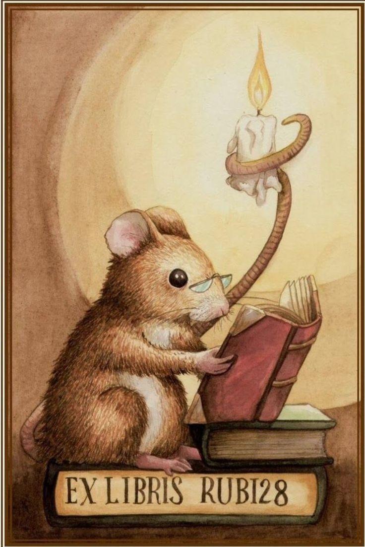 ¡Qué ratoncito más instruido!