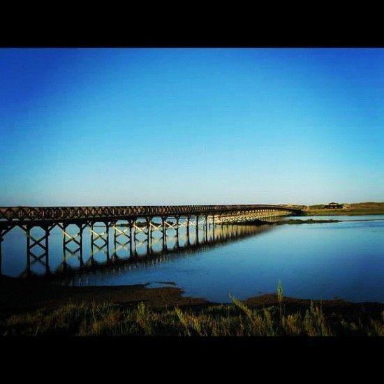 The bridge at Quinta do Lago