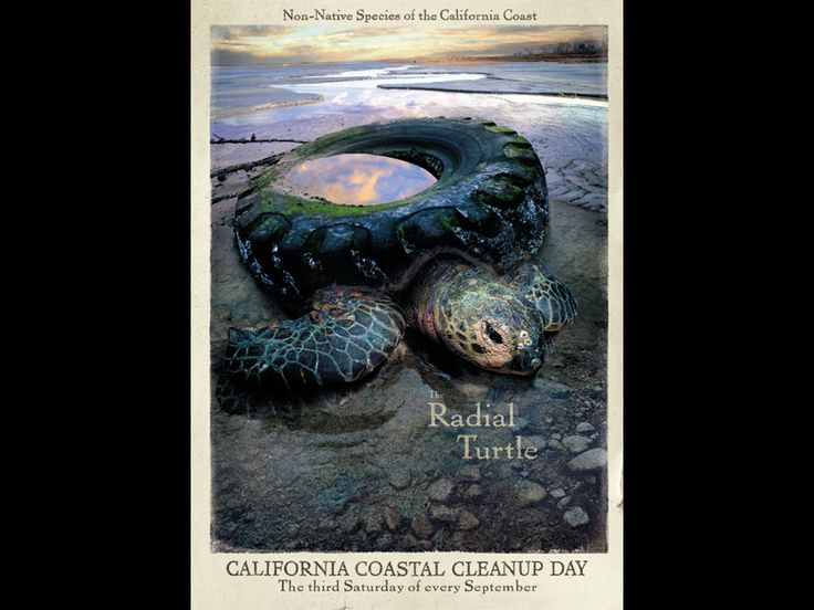 Clean up day by Goodby Silverstein & Partners for the California Coastal Commission.