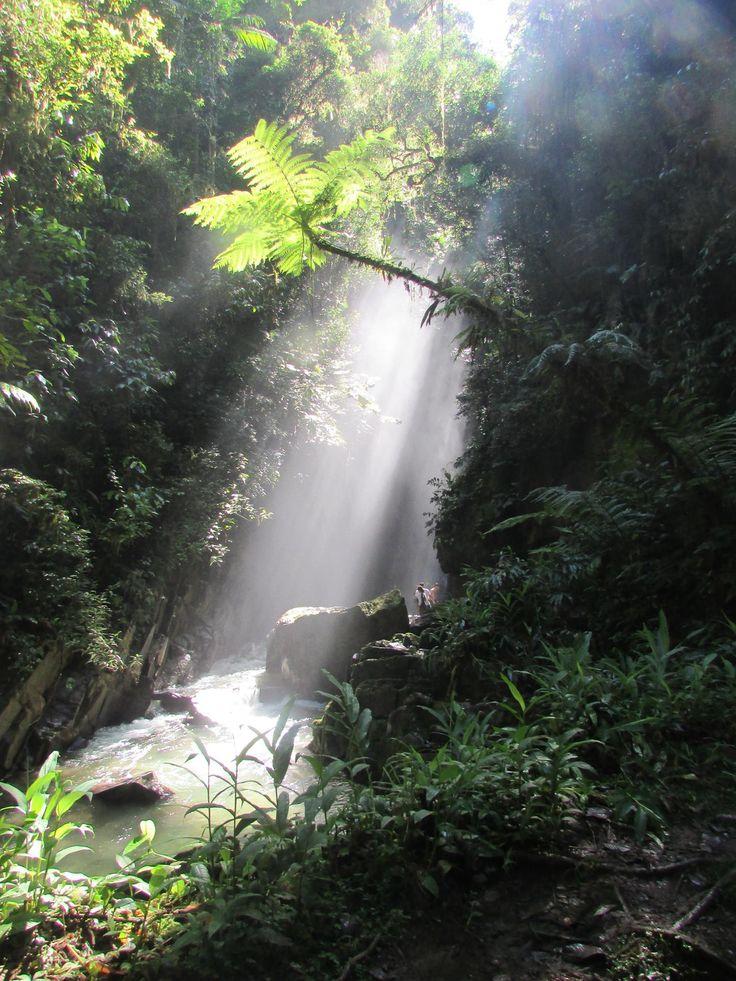 Trilha do Alambari de baixo - PETAR - SP