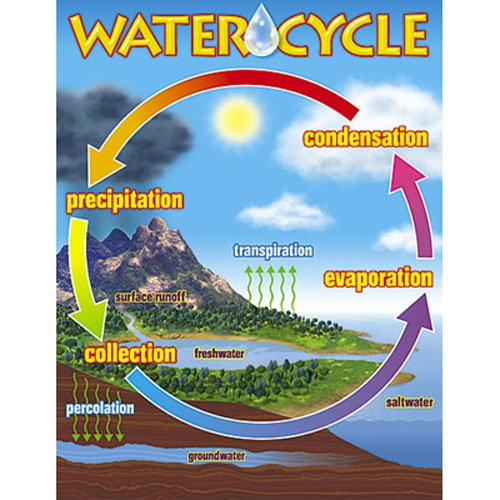 The Water Cycle Learning Chart - Scholar's Choice Teachers Store- week 2 HAHAHAHHA my teacher has this in her room
