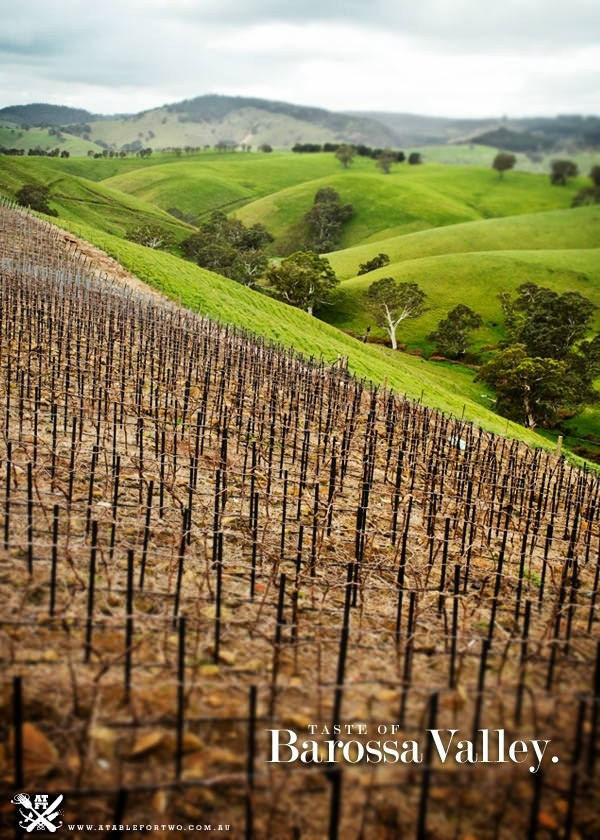 Barossa Valley, South Australia (wine country)