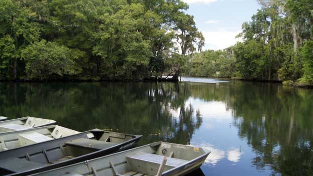 1000 Images About Chassahowitzka River Springs On