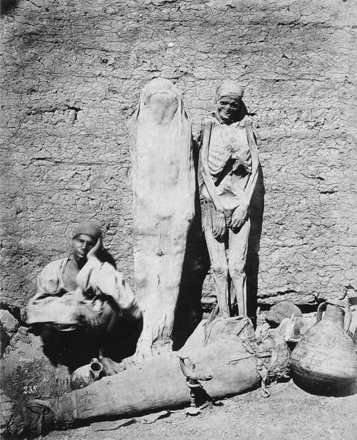 Street vendor selling mummies in Egypt, 1865