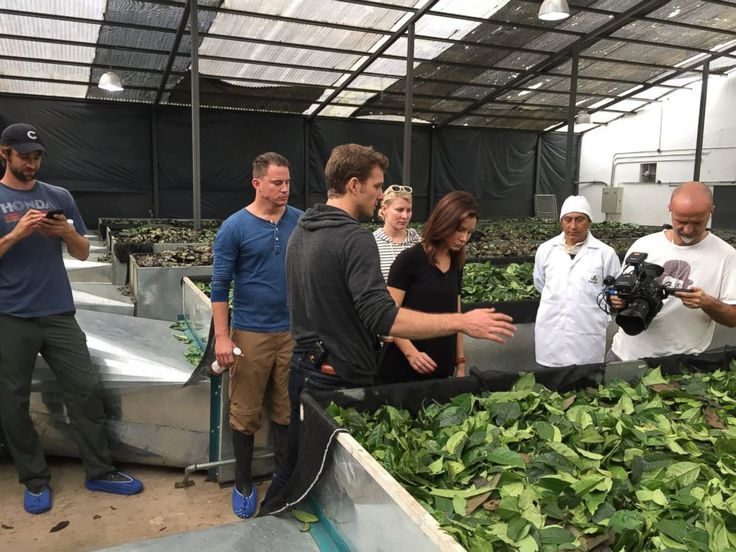 Runa co-fundador Tyler Gage e Channing Tatum mostrar ABCs Rebecca Jarvis dentro da fábrica Runa na selva amazônica durante uma entrevista com ABC News Nightline.