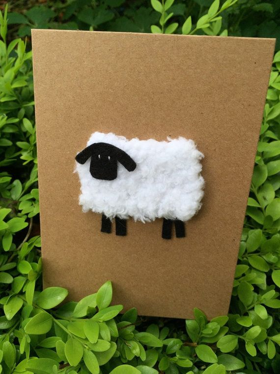 Hand Knitted Sheep Cards