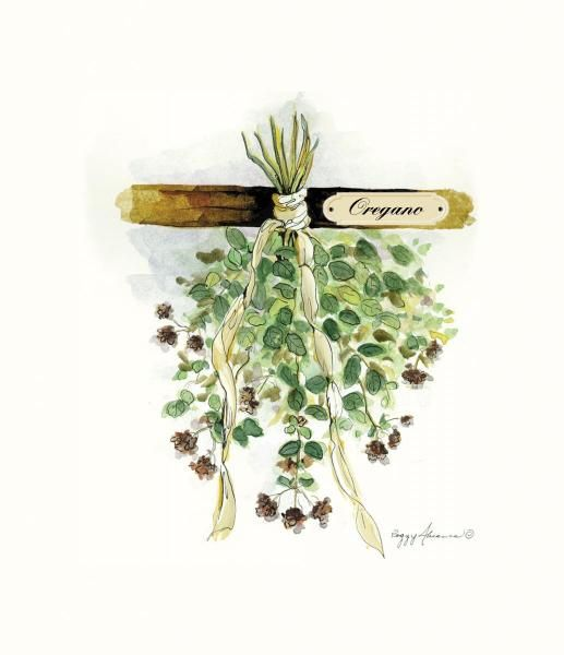 того картинки пряные травы для декупажа статье символика